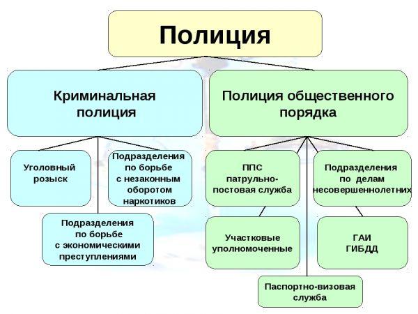 Структура полиции