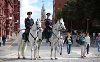 Как устроиться на работу в конную полицию России