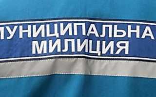 Все о муниципальной полиции в России